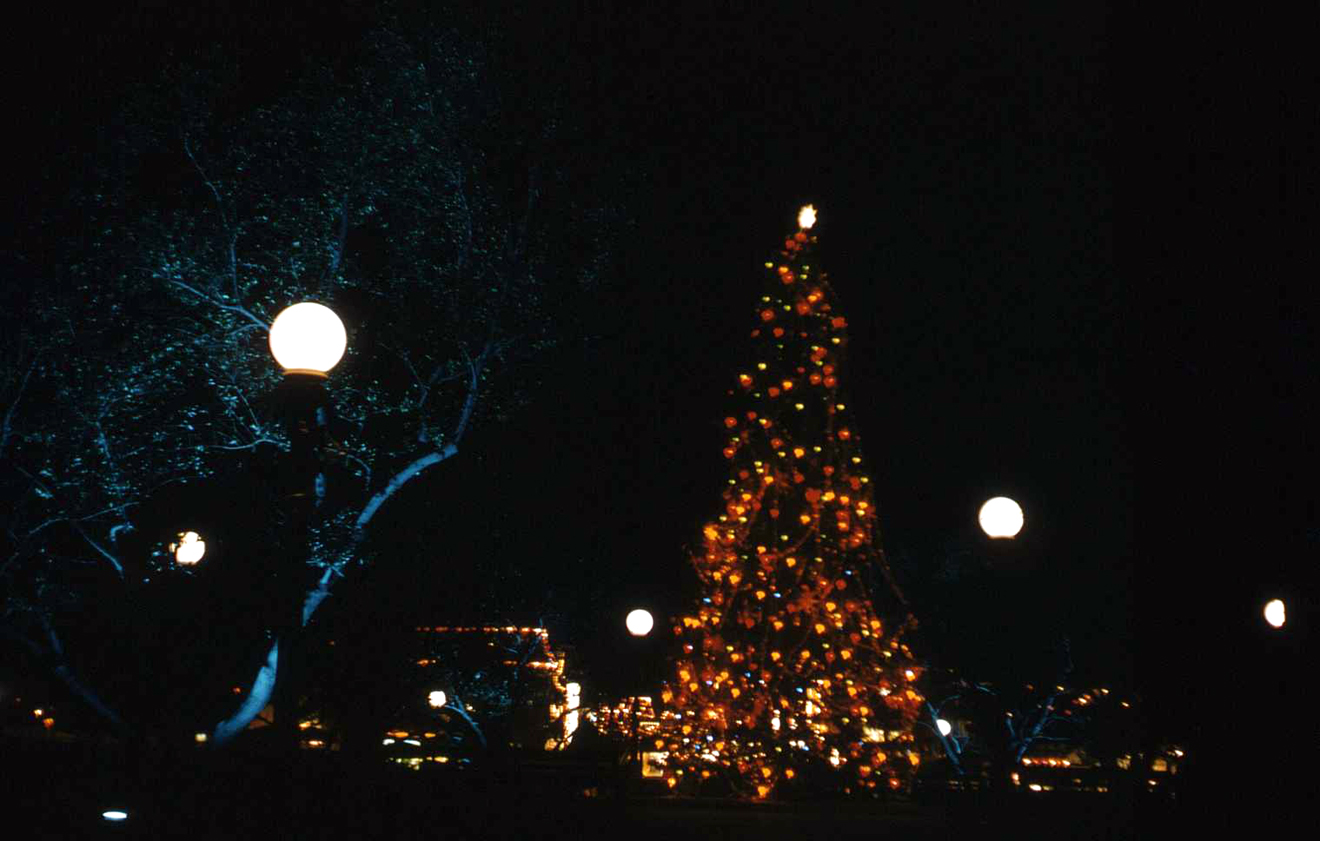 disneyland christmas at night 1955 - Christmas Tree Night Light