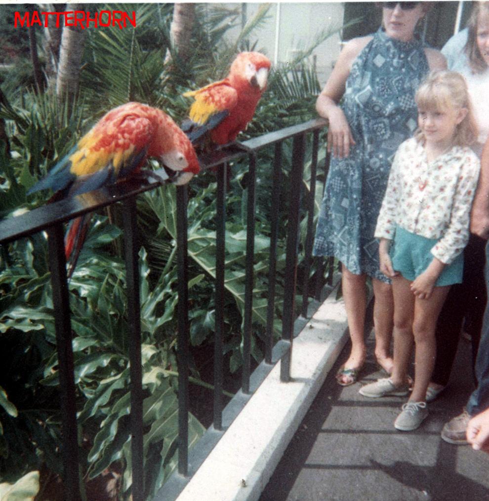 Busch Gardens Van Nuys California 1968